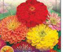 Flowering Seeds